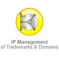 IP-management-of-trademarks-and-domains